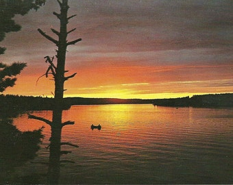 Vintage 1950s Postcard Minnesota State Sunset Scenic View Nature Pretty Card Lake River Photochrome Era Postally Unused