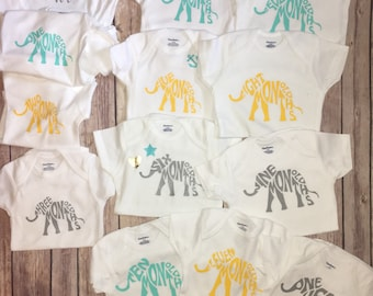 Baby onesies, month by month onesues, just born to one year old.