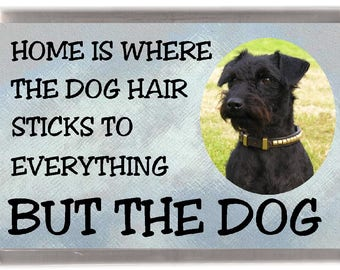 """Patterdale Terrier Dog Fridge Magnet """"Home is Where the Dog Hair Sticks to Everything But The Dog"""". Great Gift for any Dog Lover"""