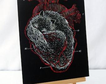 Wolf / Fox Heart A4 art print. BLACK, WHITE, RED. Anatomical.