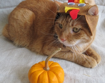 Turkey Hat for Cats