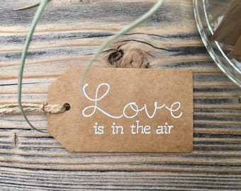 "Set of 20-""Love is in the air"" Air Plant Shower Favor Tag-Bridal Shower-Wedding Favor-Air Plant Favors-Handmade-Terrarium Favor Tag-Embossed"
