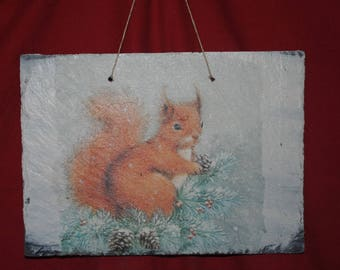 Slate theme table: Squirrel
