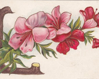 "1908 Large Wood Letter ""L"" With A Spray Of Flowers Embossed Alphabet Postcard"