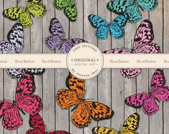 Professional Hand Sketched Butterfly Clipart - Butterfly Clip Art, Hand Drawn Butterflies, Butterfly Vector, Butterflies, Bright Butterflies