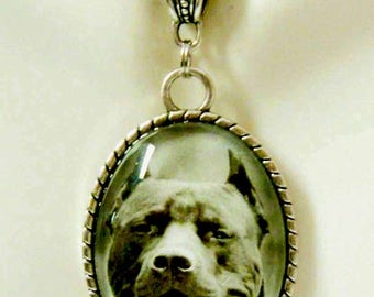 Blue pit bull pendant with chain - DAP09-067