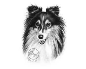 Mini custom portrait - black and white (dog portrait/animal portrait) - 6x8""