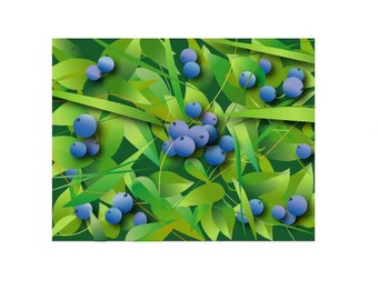 Blueberry Fields-Set of 8 Note cards