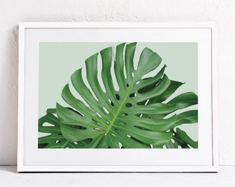 Green Plant Print, Plant Photography Plant Art Nature Wall Art Print INSTANT DOWNLOAD ART Green Leaf Art, Monstera Print Printable Art 24x36
