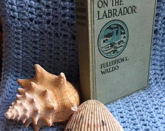 With Grenfell on the Labrador : Rare Find from 1920
