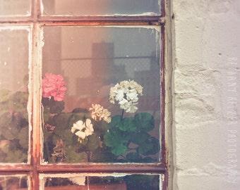 Flower Photography, 8x12 Print, Abandoned Photography, Dreamy Photography, Urban Exploration, Urban Art, Detroit Art, Rustic Decor, Pink
