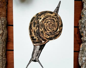 A5 Snail Illustration Print