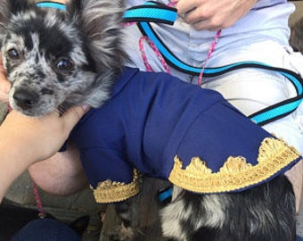 Beauty and the Beast, Beast dog jacket, Beast jacket