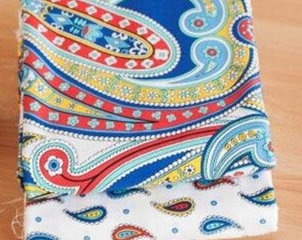 Set of 2 fabric printed Paisley tone multicolor 50cmx50cm coupons