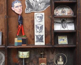Cabinet of Curiosities No.11