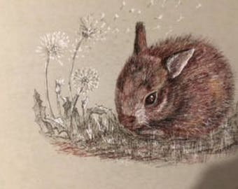 Bunny Original Pen and Ink Drawing