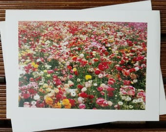 Carlsbad Flower Fields card, blank card, ranunculus, floral photography
