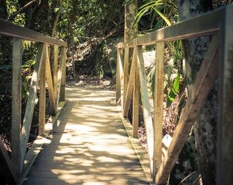 Sunlight Bush Walk Bridge Photo Print Wall Art Print Photography