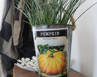 SALE! Decorative Sap Bucket - Old-Fashioned Pumpkin Seed Packet - Bucket Pail Planter Flower Pot Galvanized Tin, Halloween, Fall