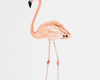 "Original Watercolor Flamingo - 9 x 12"""
