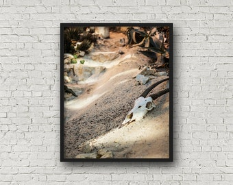 Wüste Skull Print / Digital Download / Fine-Art Print / Kunst / Home Decor / Farbe Fotografie / Reisefotografie / Frankfurt