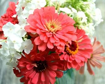 Coral Zinnia Seeds, Large Dahlia Flowered Zinnia, Heirloom Flower Seeds, Organic Zinnias Great for Butterfly Garden and Cut Flower Gardens