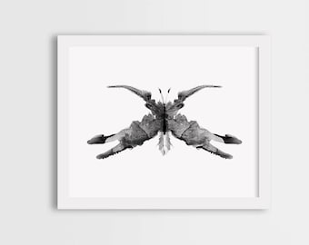 Black white butterfly art, black butterfly print, grey butterfly wall art, watercolor butterfly painting