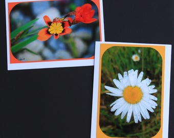 Wildflower Blank Photo Greeting Cards Set of 4