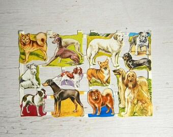 Vintage Paper Scraps Dogs Puppies   Corgi Greyhound Terrier Spaniel Wolfhound Dogs   Cut Scrap   Embossed Diecut Scrap   MLP 1549