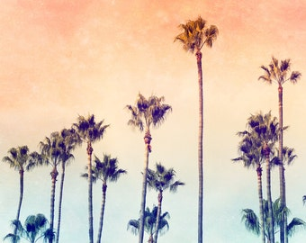 California Photography, Palm Tree Art, Ombre, Palm Trees, California Art, Summer Nights, Peach, California Print, Palm Tree Print, Sunset