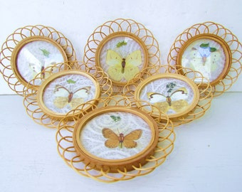 Vintage Butterfly and Rattan Reed Coasters - Set of 6 Assorted Butterflies - Rattan - Butterflies - Glass - Mid Century Modern Rattan -