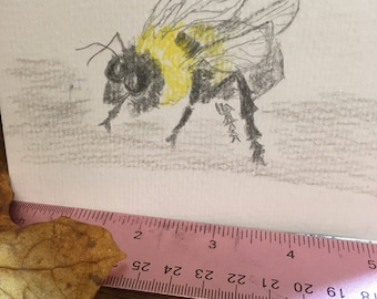 """Fat bee, pen and ink, 4"""" by 6"""", original art, one of a kind art , pencil art"""