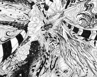 Cosmic Doodle