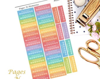 Medication Planner Stickers/ Tracking Stickers/ Health Stickers/ Erin Condren/  Plum Paper/ Recollections/ Happy Planner  #001