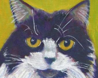 "Tuxedo  cat art card, ""Cleo"", 5"" x 5"" blank greeting card, black and white cat"