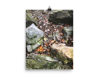 Stones and Fallen Leaves by the Lakeside / Photography Print /Photo paper poster