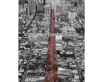 2008 Philadelphia Phillies Parade Print