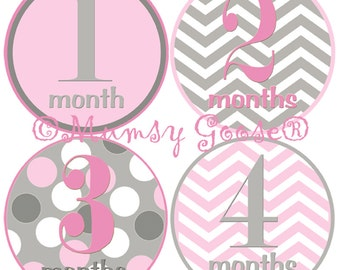 Baby Girl Month Stickers Monthly Baby Signs Milestone Baby Stickers Bodysuit Stickers Pink Grey Chevron Baby Girl Gift 1st Year Pictures