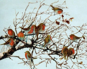 Christmas Birds Card - Robins Flock in a Tree - Christmas Greeting Card