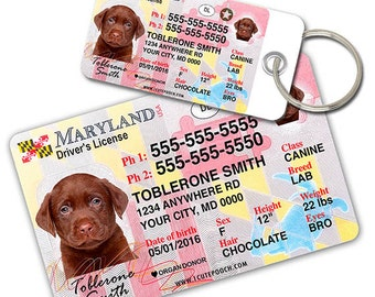 Maryland Driver License Custom Pet ID Tags and Wallet Card - Dog ID Tag - Personalized Pet ID Tags