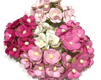 Pinks Bulk Pack Mixed Mulberry Paper Sweetheart Blossom Bl026