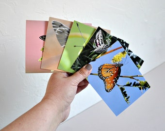Set of 5 Photo Note Cards Butterfly Collection Photography Blank Cards