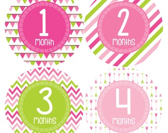 Monthly Baby Stickers Baby Month Stickers Baby Girl Month Stickers Monthly Photo Stickers Monthly Milestone Stickers Arrows Bunting 377