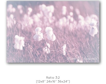 Dreamy photography, wild cotton field, romantic nature wall art, pink hazy field, landscape canvas, fluffy photo print, nature photography