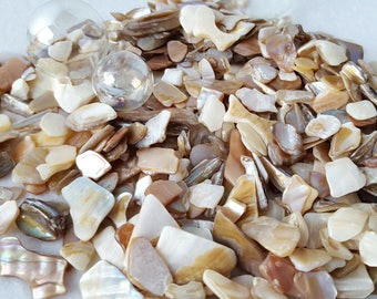 Beach Wedding Decor Crushed Shell - Nautical Decor or Crafts Crushed Shell - Shiny Natural Color, 22oz.