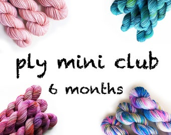 Hand Dyed Yarn Mini Skein Club 6 months. Customizable monthly yarn club subscription. Gift for Knitters, Gift for Crafters. PLY Yarn Club!