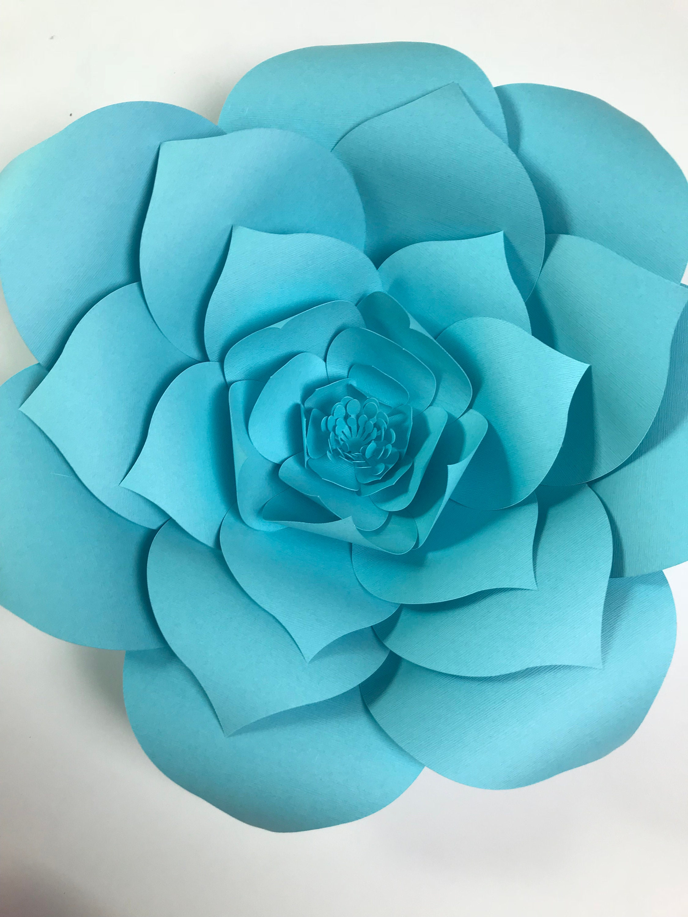 Do it yourself paper flowers choice image fresh lotus flowers paper flower kit do it yourself paper flower kits paper flower mightylinksfo