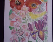 Flower Fairy note cards c...