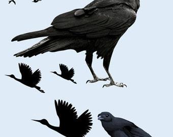 Crow Image, Crow Cutout, BLACK BIRD IMAGE, Bird Cutout, Large Clipart, Scary Bird, Transparent Background, Transfer Template, Craft Supplies