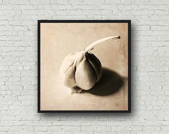 Garlic Food Photography - Digital Download - Garlic Print - Food Photography Printable - Garlic Instant Download Print - Still Life